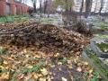 Before Jewish cemetery clean-up/Pirms ebreju kapu kopšanas/Перед уборкой еврейского кладбищаIMG_1641